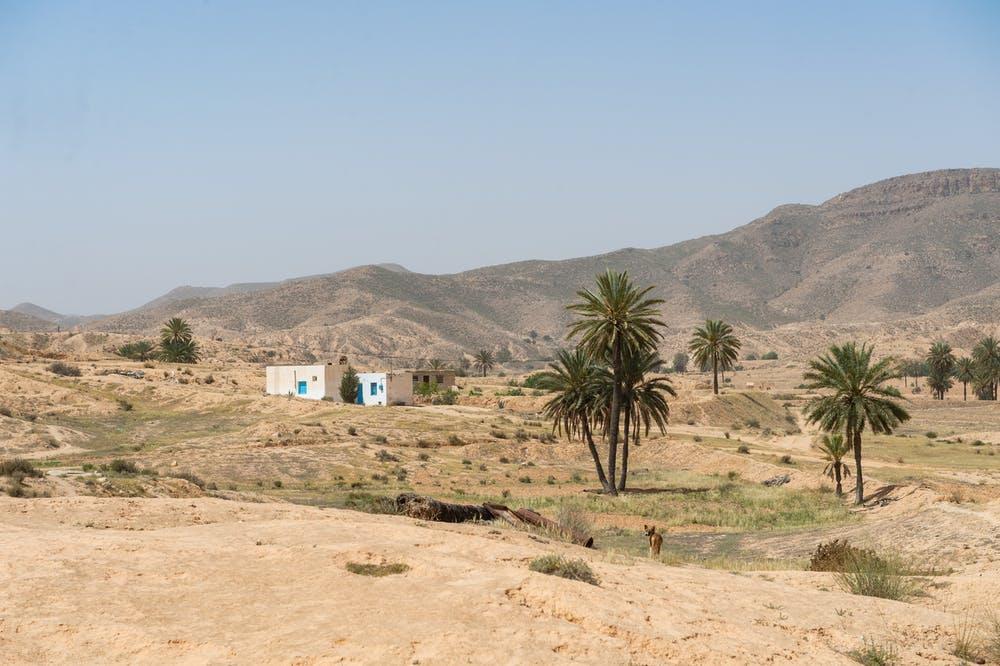 Tunezja wakacje