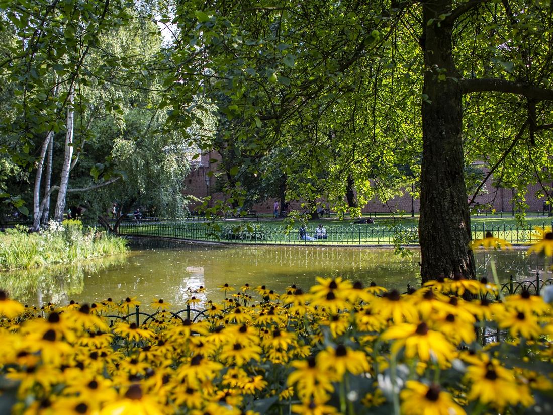 Planty Krakowskie - lato fot. Ela Marchewka