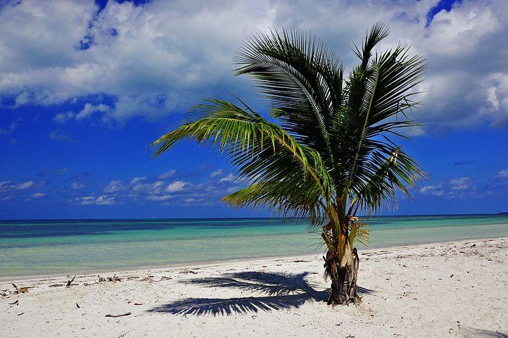 Kuba wycieczki